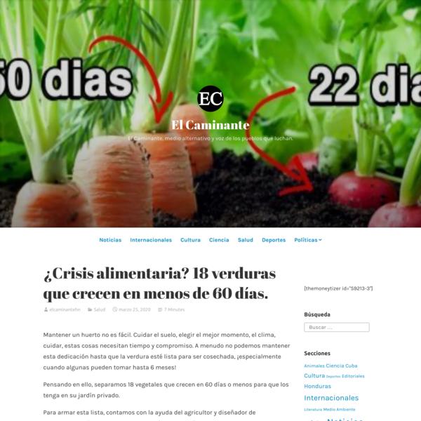 ¿Crisis alimentaria? 18 verduras que crecen en menos de 60 días.