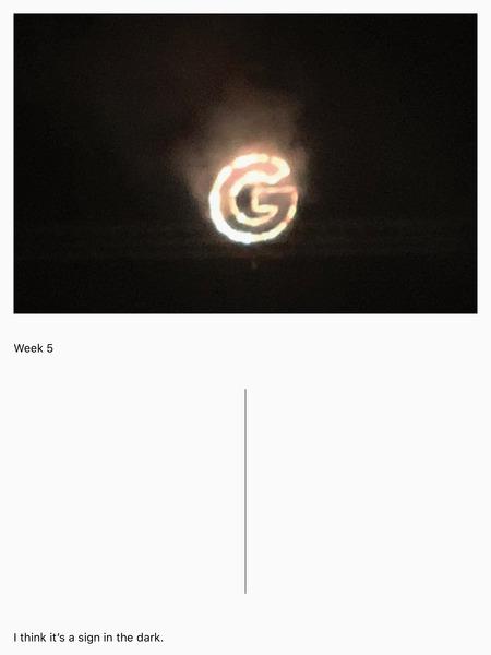 week-5.jpg