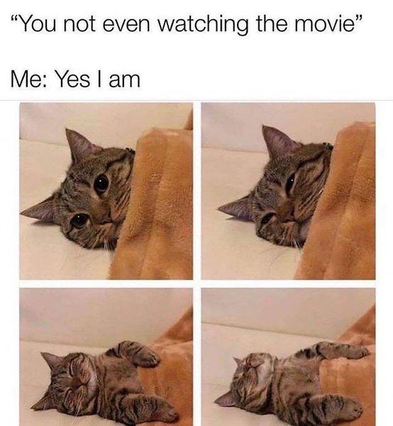 Me 😂😂😭😭
