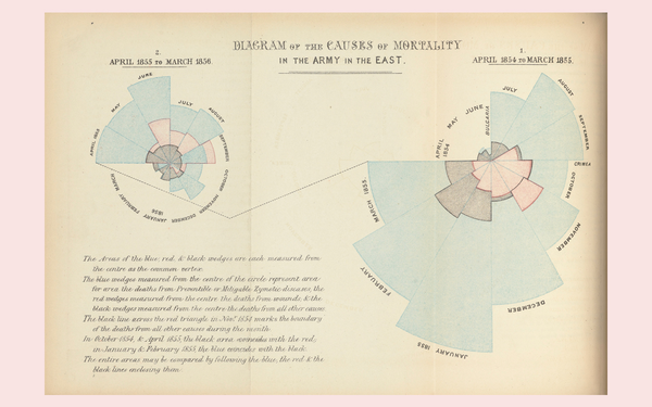 Florence Nightingale, Diagram showing mortality statistics of the British army in the Crimean War, 1958