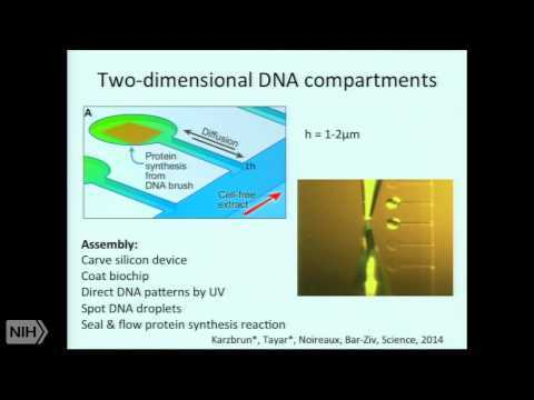Programmable on-chip DNA compartments as Artificial Cells