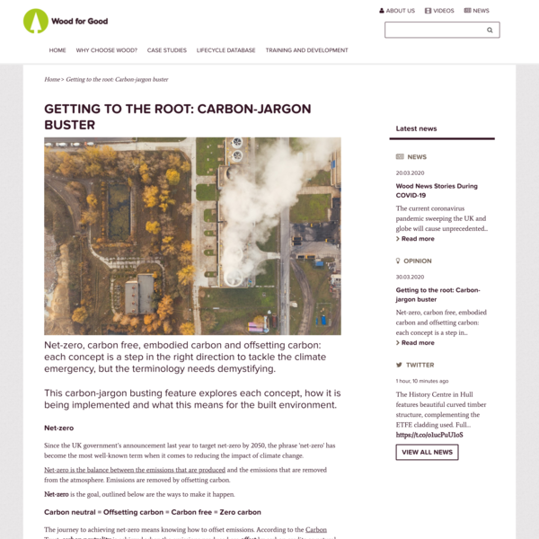 Getting to the root: Carbon-jargon buster