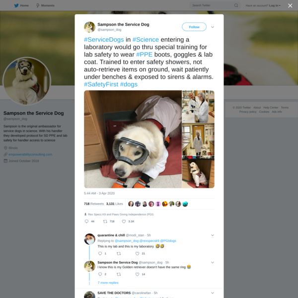 Sampson the Service Dog on Twitter