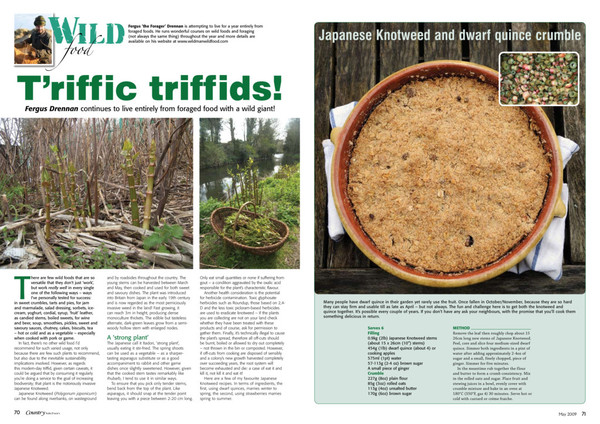ckmay09trffictriffids.pdf