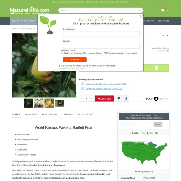 Bartlett Pear Tree   Buy at Nature Hills Nursery