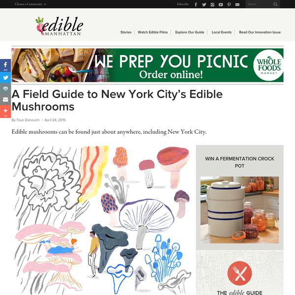 A Field Guide to New York City's Edible Mushrooms   Edible Manhattan