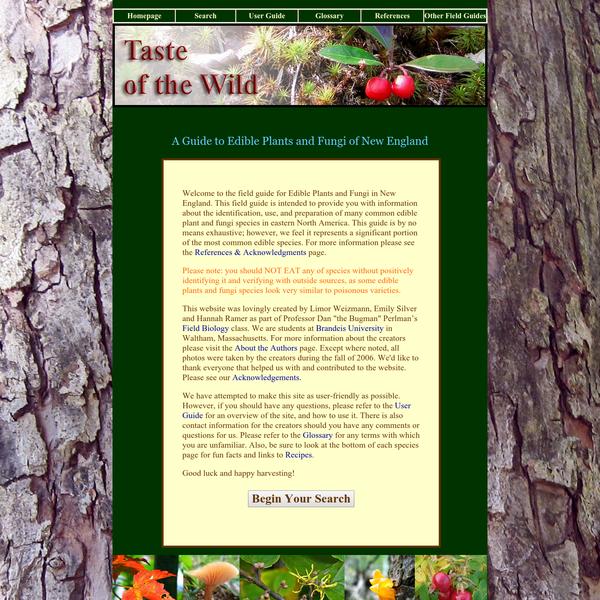 Taste of the Wild: Homepage