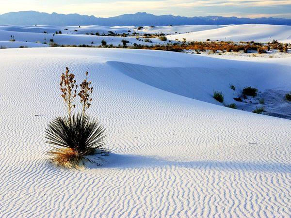 white-sands-national-monument.jpg