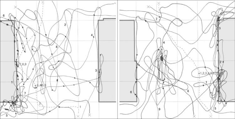 path-map.jpg