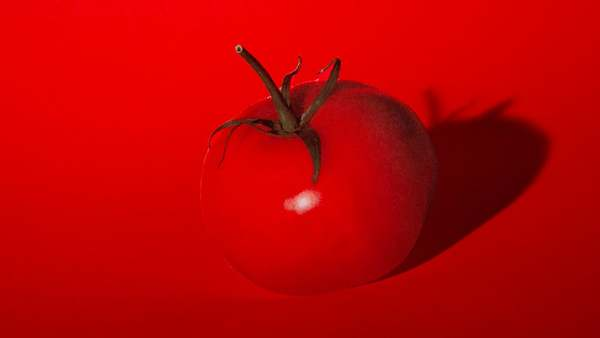 A juicy moving picture about words, the world and a beloved, oft overlooked fruit. Tomato is the first in a series of bite-sized, visually punny films that reconsider some of the most humble and ubiquitous foods on our plate- the ways we define and consume them, and also how those foods might be defining us!
