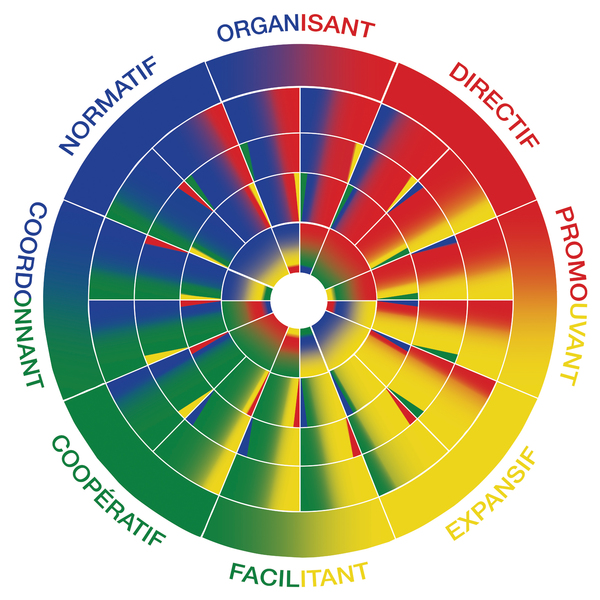 roue-disc-leader-leadership-manager-profil-disc-dominant-stable-conforme-influent-patrice-fabart-sucess-insights-methode-arc-en-ciel-profil-type-disc-romain-yvrard-marston-jung-profil-adapte-profil-naturel-analyse-comportementale.jpg