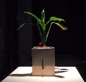 A plant that wilts or grows depending on the strength of the wifi signal.  http://tegabrain.com/Eccentric-Engineering