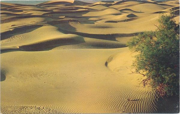 Sand-Dunes.jpeg