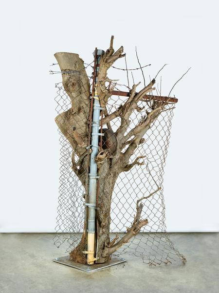 Charles Harlan, Tree, 2016