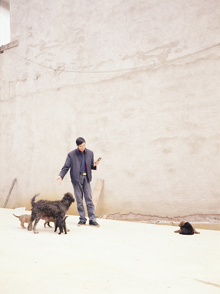 China Diary 5 (Man and dogs)