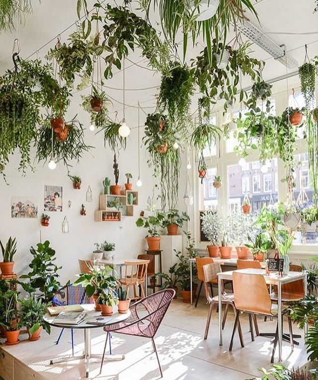 🌱🍃☘🍀🌱 @wildernisamsterdam #inspiration #design #interiordesign #wildernisamsterdam #voyagershop