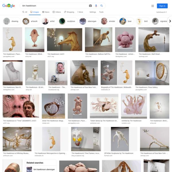 tim hawkinson - Google Search