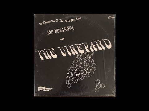 Dreams Of You - Joe Rosanova & The Vineyard