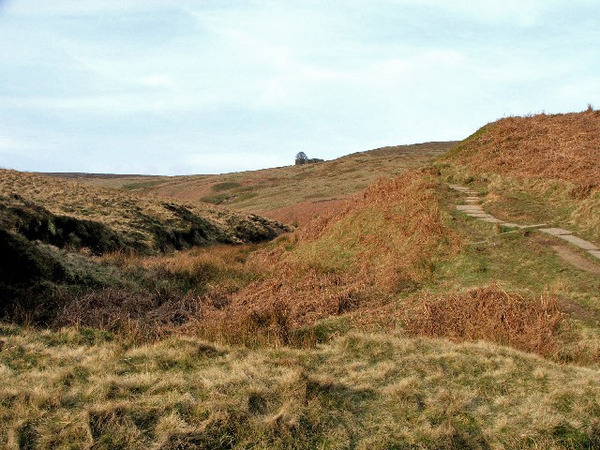 the_climb_to_top_withens._-_geograph.org.uk_-_393405.jpg