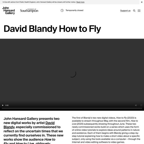 John Hansard Gallery | Videos | David Blandy How to Fly