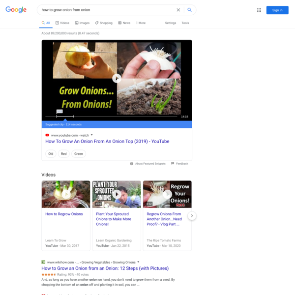 how to grow onion from onion - Google Search