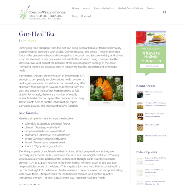 Gut Health Herbal Tea Formula for Gastrointestinal Disorders · CommonWealth Center for Holistic Herbalism