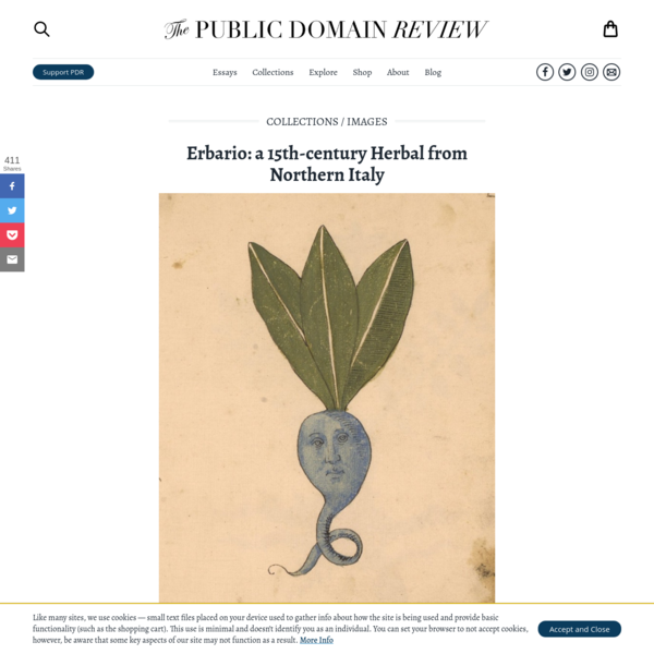 Erbario: a 15th-century Herbal from Northern Italy