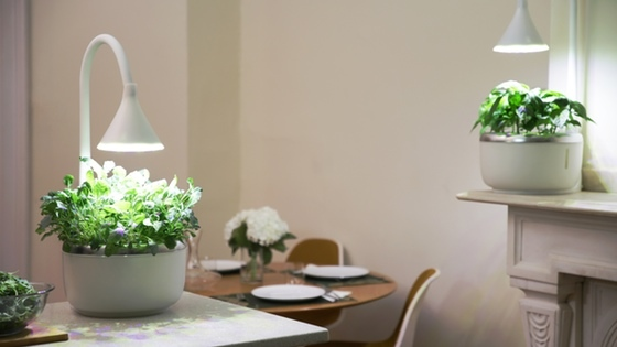 SproutsIO: Smart Microgarden