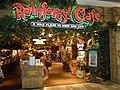 Rainforest Cafe.jpg