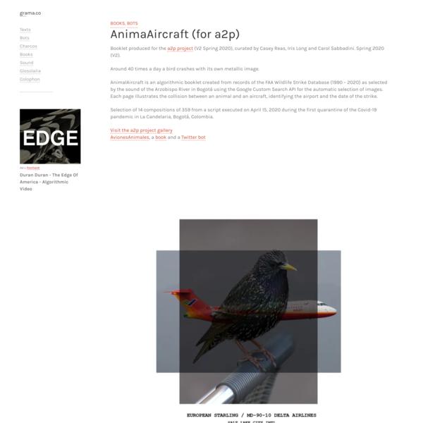 AnimaAircraft (for a2p) – grama.co