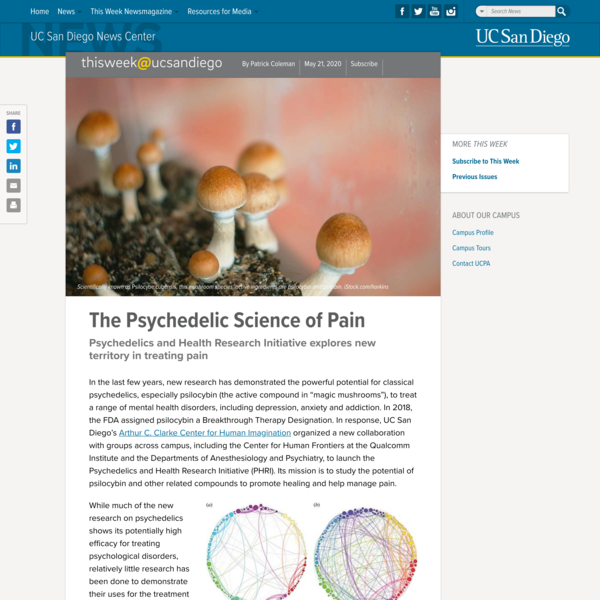 The Psychedelic Science of Pain
