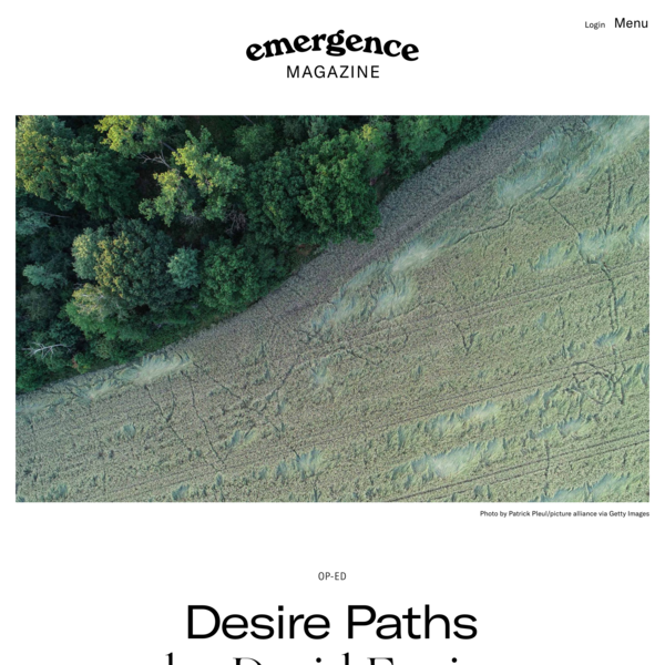 Desire Paths – Emergence Magazine