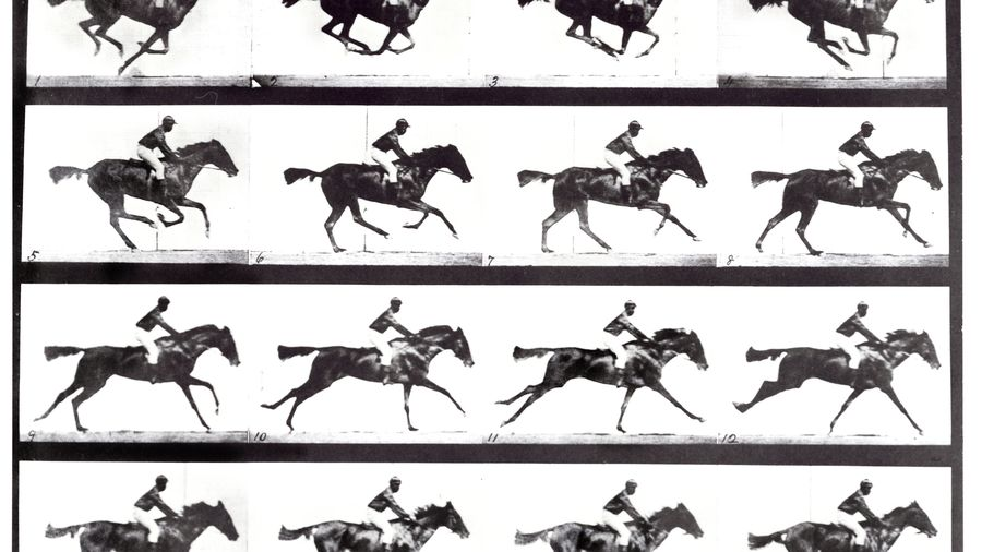 high-speed-sequence-of-a-galloping-horse-and-rider-680806289-59c0259c68e1a20014827f5f.jpg