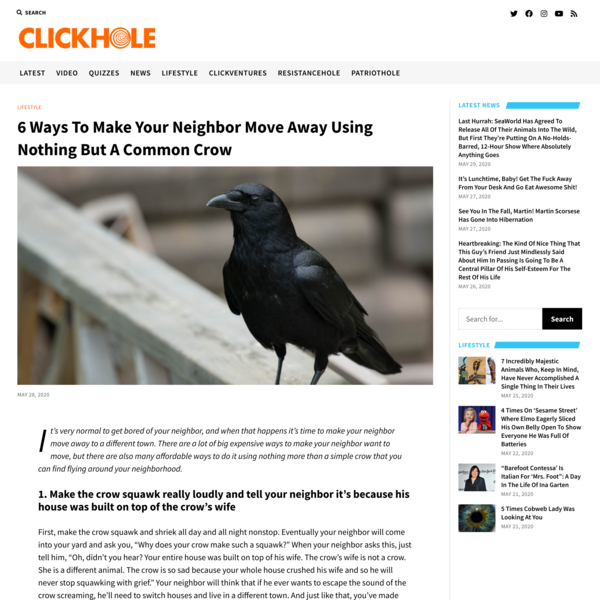6 Ways To Make Your Neighbor Move Away Using Nothing But A Common Crow