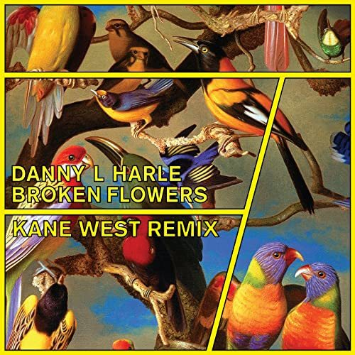 Danny L Harle - Broken Flowers (Kane West Remix)