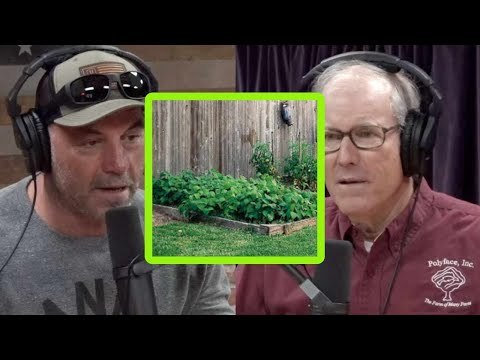 Joel Salatin on the Potential of Backyard Agriculture