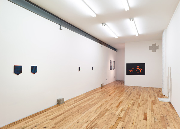 Snout to Tail, Installation view, 2013