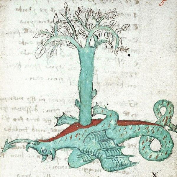"𝚂𝙿𝙸𝚁𝙸𝚃 𝚁𝙴𝙲𝙴𝙸𝙿𝚃 on Instagram: ""Collectanea de Lapide Philosophiae, 16th century"""