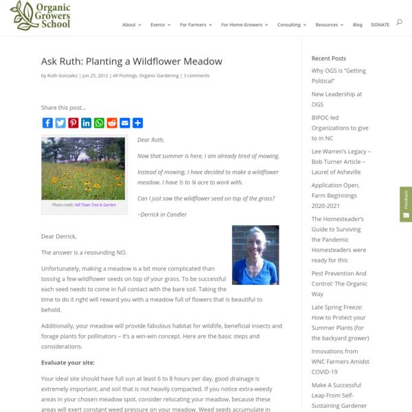 Ask Ruth: Planting a Wildflower Meadow| Organic Growers School | Organic Gardening