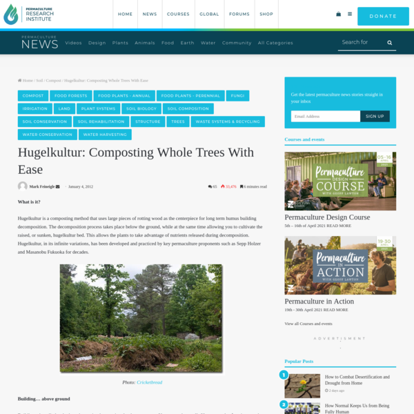 Hugelkultur: Composting Whole Trees With Ease - The Permaculture Research Institute