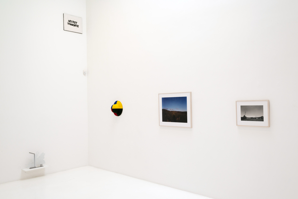 Particular Pictures, 2014