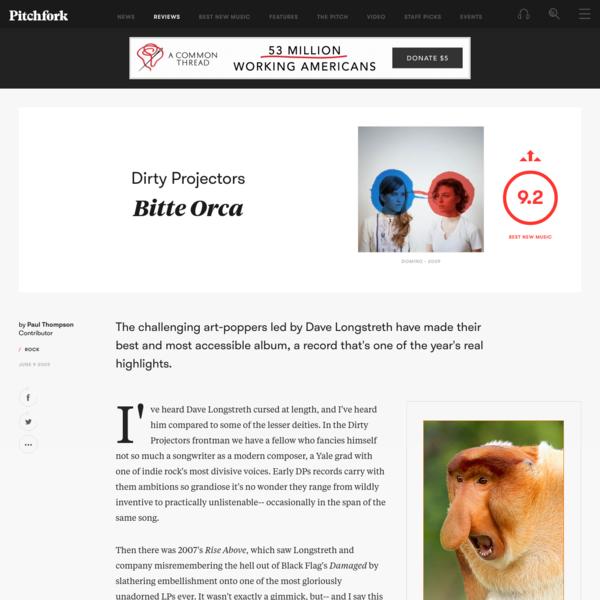 Dirty Projectors: Bitte Orca