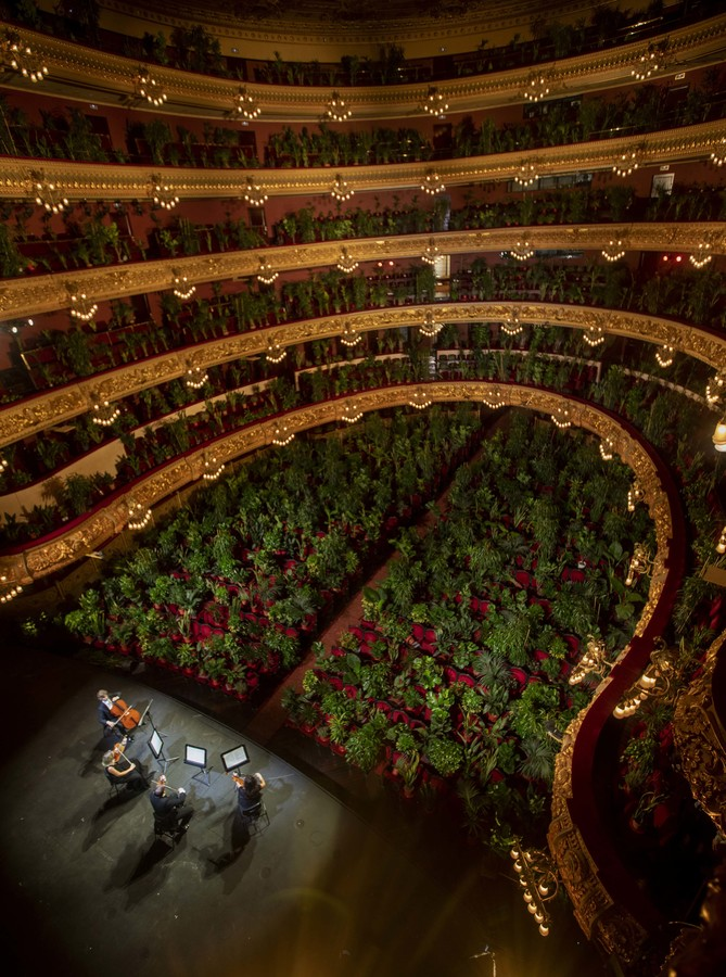 200623123443-02-barcelona-opera-plants.jpg