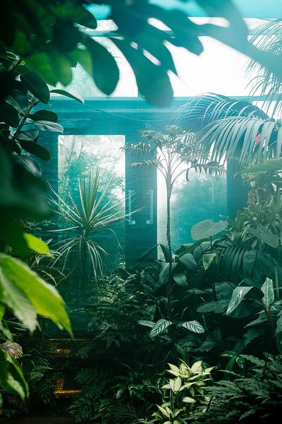 botanical_garden_samuel_zeller_dscf6809.jpg?format=1500w