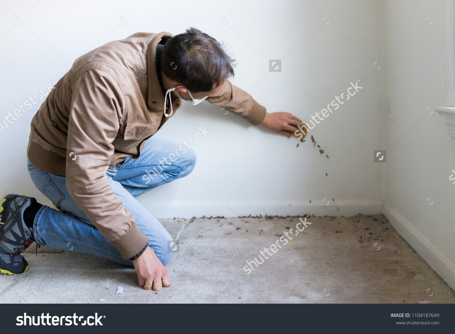 stock-photo-young-man-in-mask-sitting-crouching-by-room-wall-carpet-floor-flooring-white-painted-walls-during-1104187649.jpg