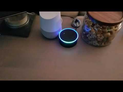 Decided to have some fun with my Echo and Google Home To use this video in a commercial player or in broadcasts, please email licensing@storyful.com - Forward all media requests relating to your video to our licensing team: licensing@storyful.com - For all other queries, please contact videosupport@storyful.com