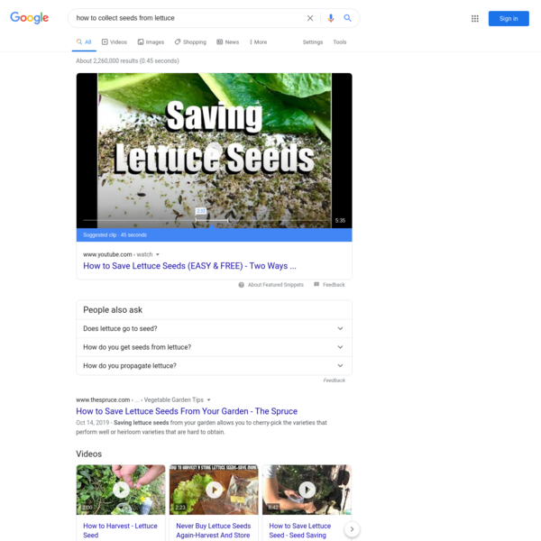 how to collect seeds from lettuce - Google Search
