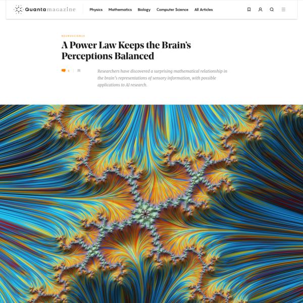 A Power Law Keeps the Brain's Perceptions Balanced | Quanta Magazine
