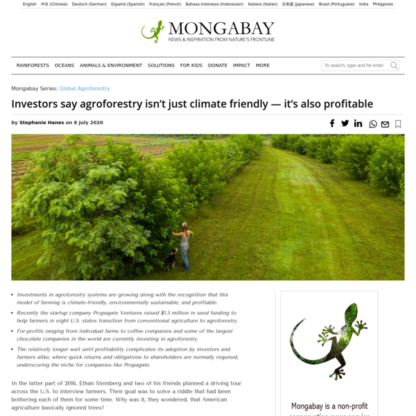 Investors say agroforestry isn't just climate friendly - it's also profitable