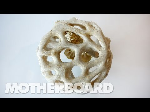 In this episode of Upgrade, Motherboard dives head first into the R+D world surrounding the development of fungi as a viable replacement for plastic, and the people who hope it can lead to a better and more sustainable future.